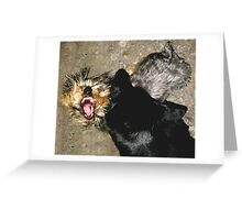 Fine, I Love You!!  Now Let Go of My Neck! Greeting Card
