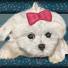 Cute Maltese Dog with Creme Fur and Red Ribbon by ibadishi