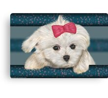 Cute Maltese Dog with Creme Fur and Red Ribbon Canvas Print