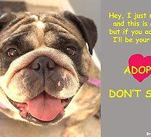 Adopt! by brotbackgeraet