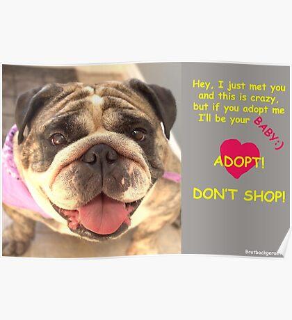 Adopt! Poster