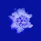 Blue iphone Cover by brotbackgeraet