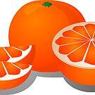Cut orange illustration by kgtoh