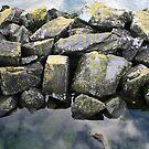 Mossy rocks by kgtoh