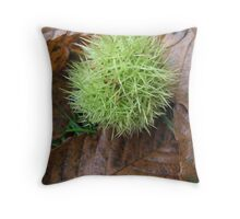 Sweet Chestnut Throw Pillow