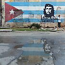 Che Guevara Mural by LauraZim