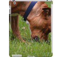 A Grazing Doggie iPad Case/Skin
