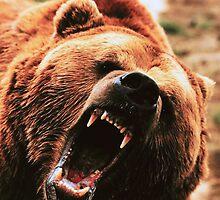 GRIZZLY BEAR by Chuck Wickham