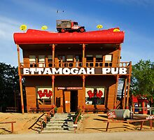 Ettamogah Pub at Albury by Darren Stones