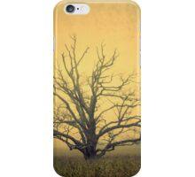 harvest of light iPhone Case/Skin