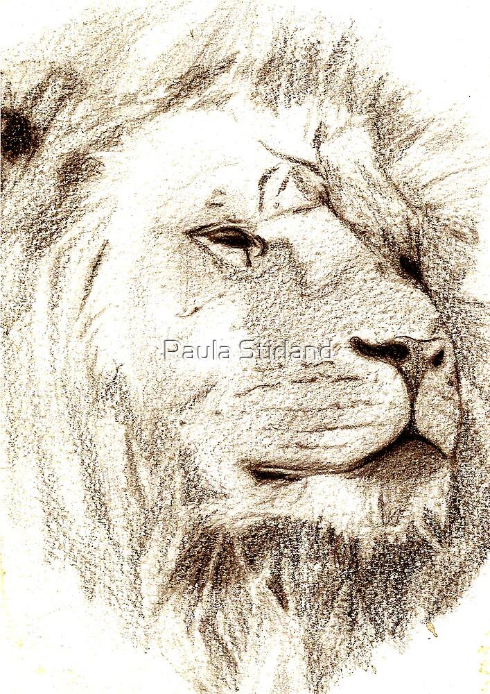 His Majesty by Paula Stirland