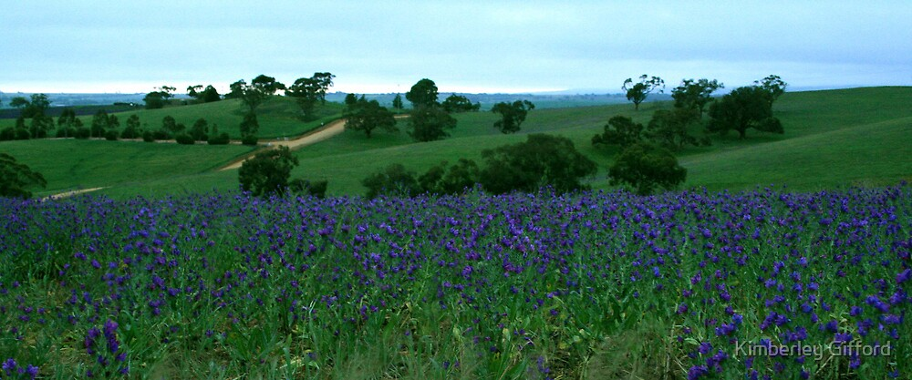 Colours of Barossa Valley by Kimberley Gifford