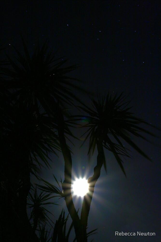 Tropical Moon by Rebecca Newton