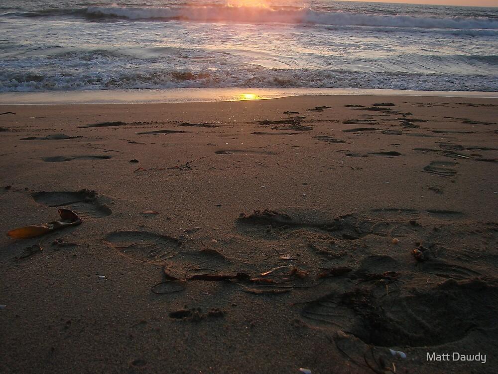 Beach Doings by Matt Dawdy