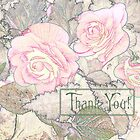 Pink Begonias - Thank You Card  by Sandra Foster