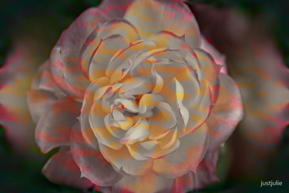 stippled rose by justjulie