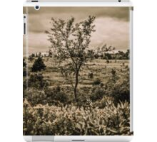 Vintage Style Autumn Landscape In The Park iPad Case/Skin