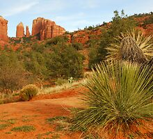 Cathedral Rock, Sedona, Arizona by Karin  Hildebrand Lau