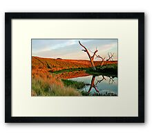 Lagoon on Thompson's Creek Framed Print