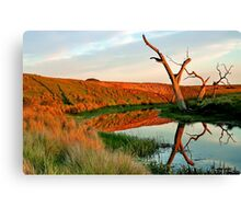 Lagoon on Thompson's Creek Canvas Print