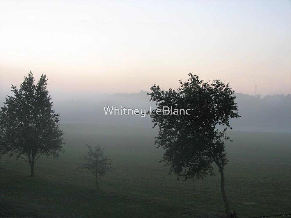 mist by Whitney LeBlanc