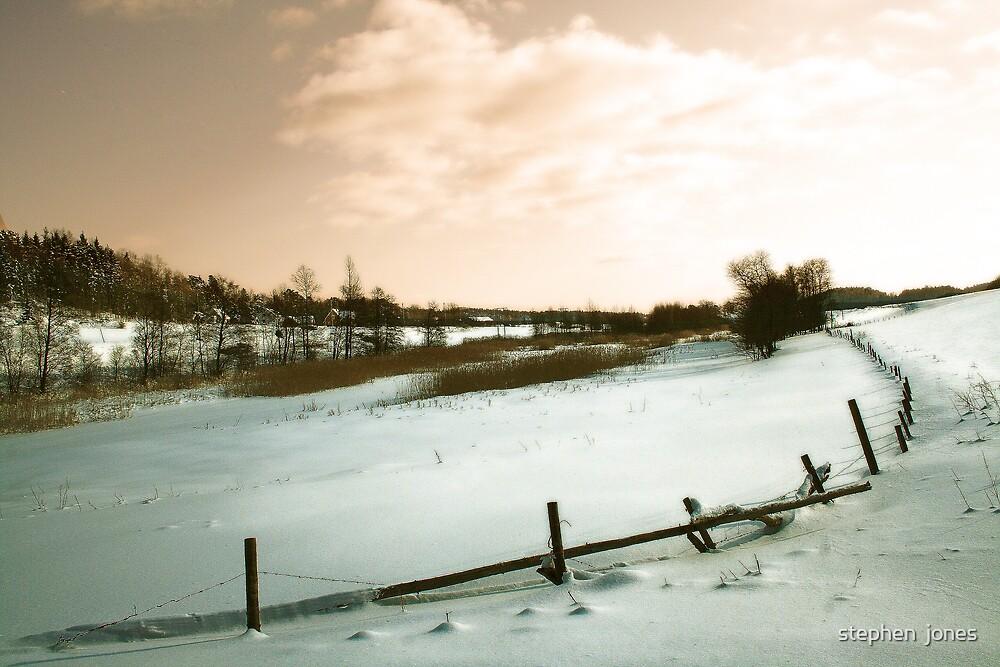 snow rail by stephen  jones