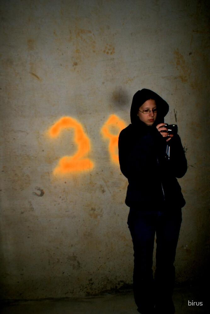 28 by birus