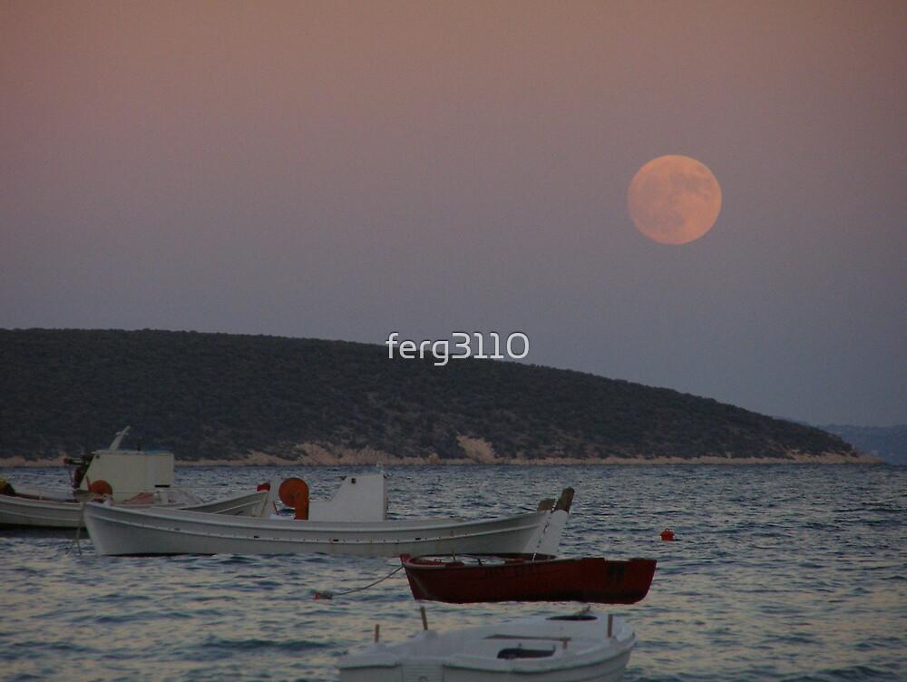 full moon rising by ferg3110