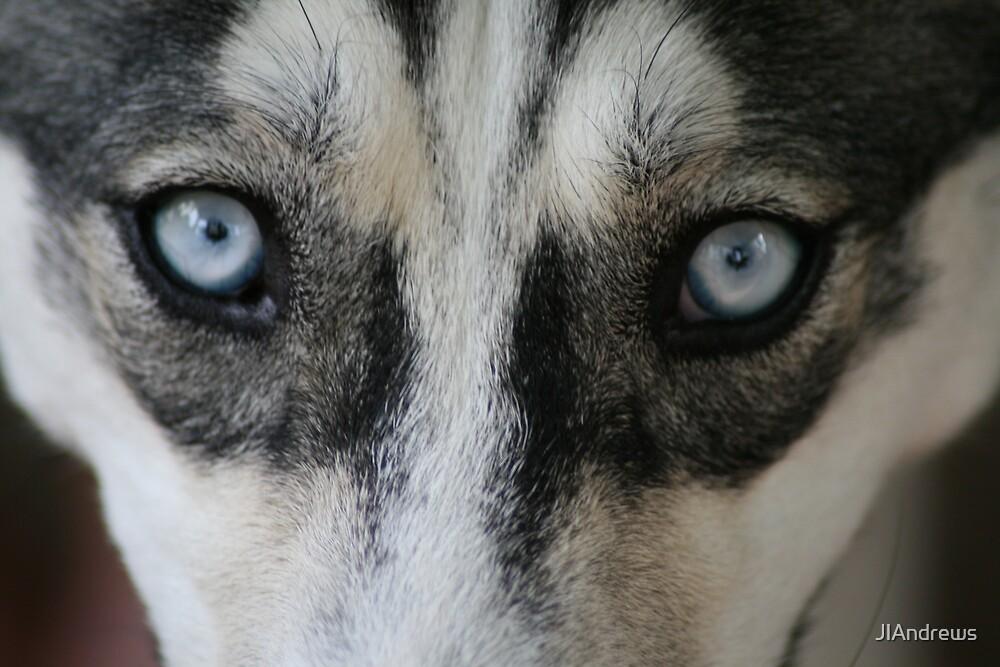 the devils eyes by JlAndrews