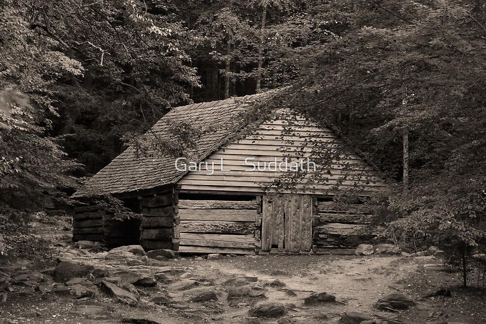 Noah Ogle's Barn by Gary L   Suddath
