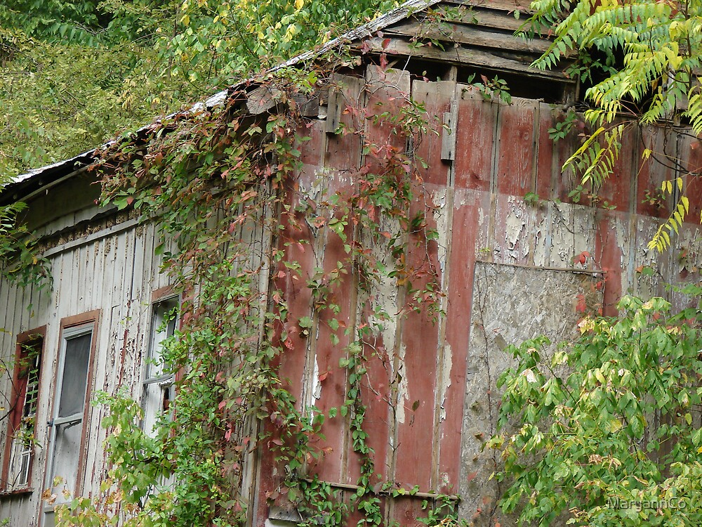 Old house by MaryannCo