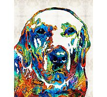 Labrador Retriever Art - Play With Me - By Sharon Cummings Photographic Print