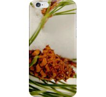 Acorn In The Snow iPhone Case/Skin