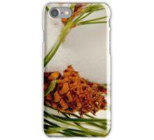 Acorn In The Snow iPhone Case/Skin