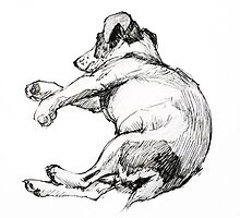 Ink sketch : Richard's dog sleeping by Roz McQuillan