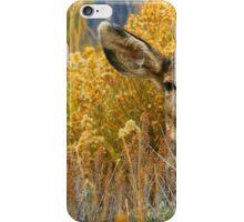 Colorado Deer iPhone Case/Skin