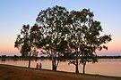 Lake Albert at Wagga Wagga by Darren Stones