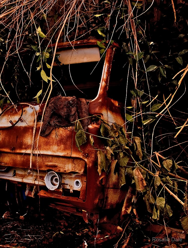 Rusty truck  by Rosalie Dale