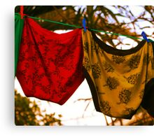 Knickers............. Not to be confused with knockers although both tend to lose their elasticity in time!! Canvas Print