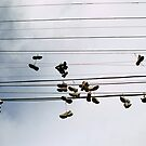 1810 Overture by Christopher Barker