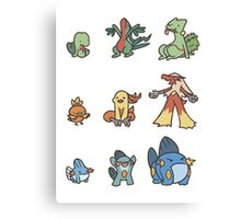 3rd gen pokemon starters cute design Canvas Print