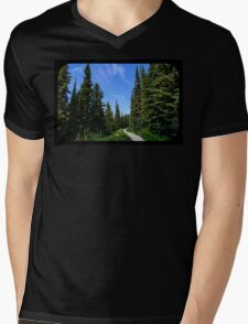 Country path Mens V-Neck T-Shirt