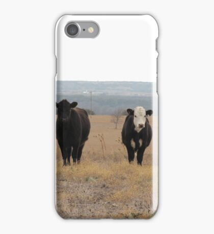 Calves at Noon iPhone Case/Skin