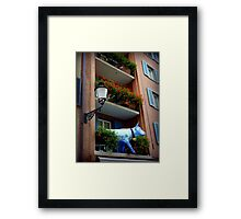Quaint Swiss Window Box  Framed Print
