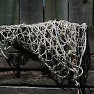 fishing net by SusanC