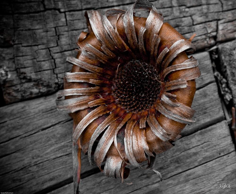 flower by kyka