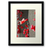 Poppies on the Memorial War (1) Framed Print