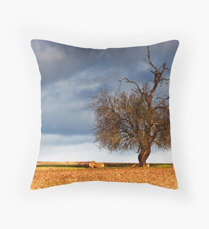 Clouds of Hope Throw Pillow