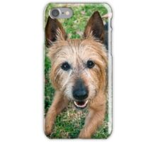 The Happy Terrier iPhone Case/Skin
