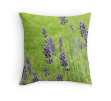 Lanvender Throw Pillow